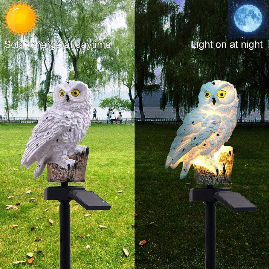 San Diego Art House led home decor Solar Powered Owl Lamp