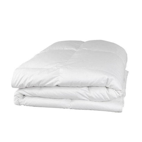 250TC Sateen 100% Cotton Comforter (Pack of 6 Units)