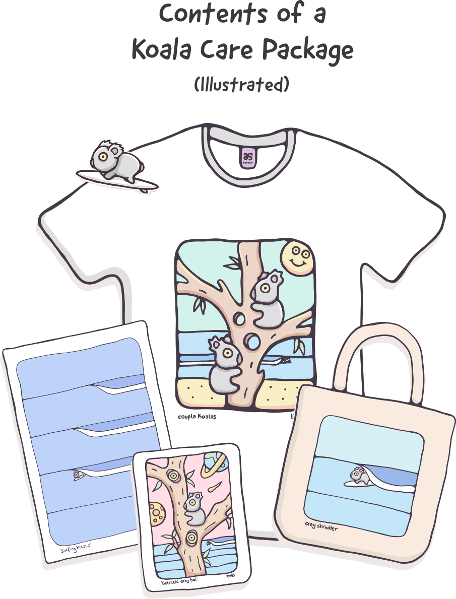 Koala Care Package illustrated items