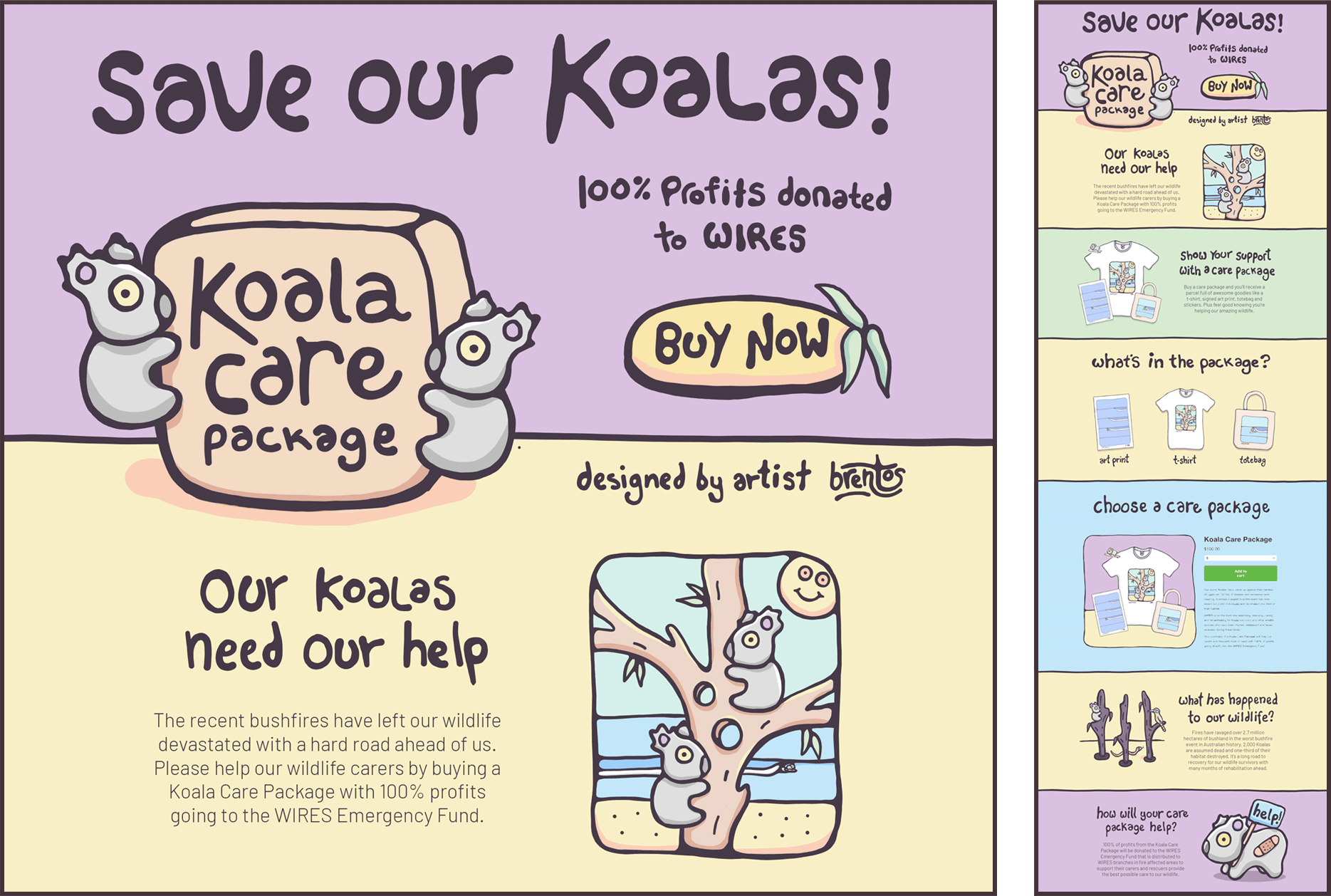 Koala Care Package Design