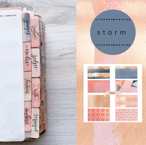 storm bible tabs