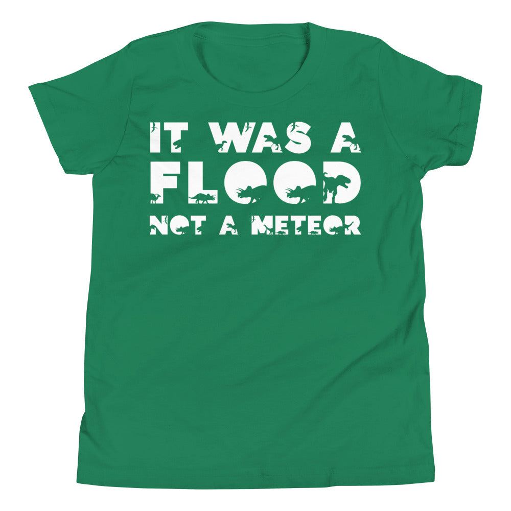 Dinosaur Flood Shirt
