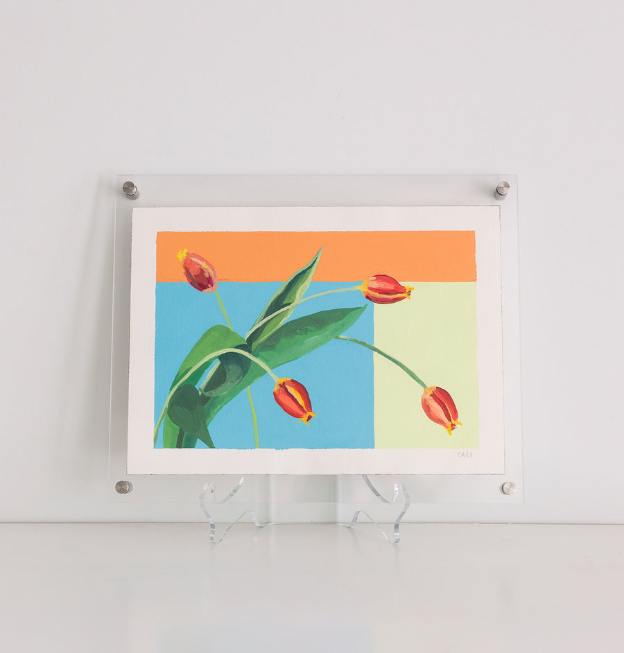 Caroline Gray Framed Work On Paper Tulips #1
