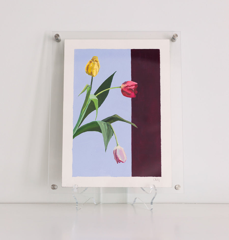 Caroline Gray Framed Work On Paper Tulips #2
