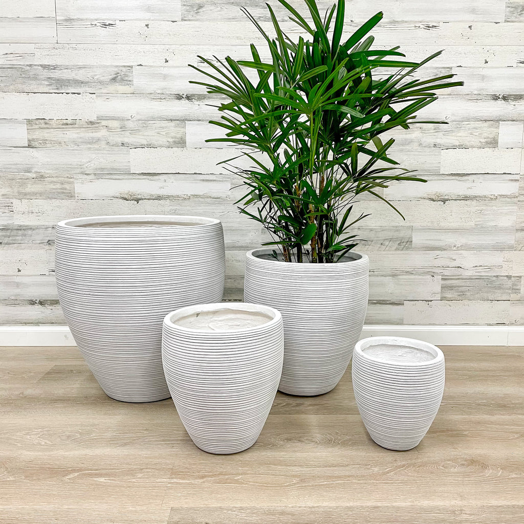 Fiberclay Taper Striped Planter - White - 18-inches