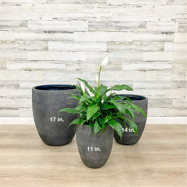Fiberclay Mixed Stripe Planter - Black - 11-inches