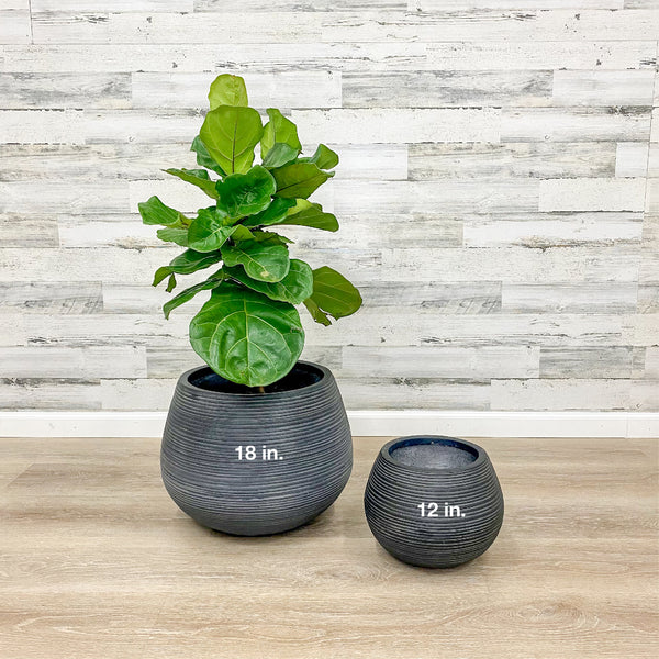 Fiberclay Belly Planter - Black - 18-inches
