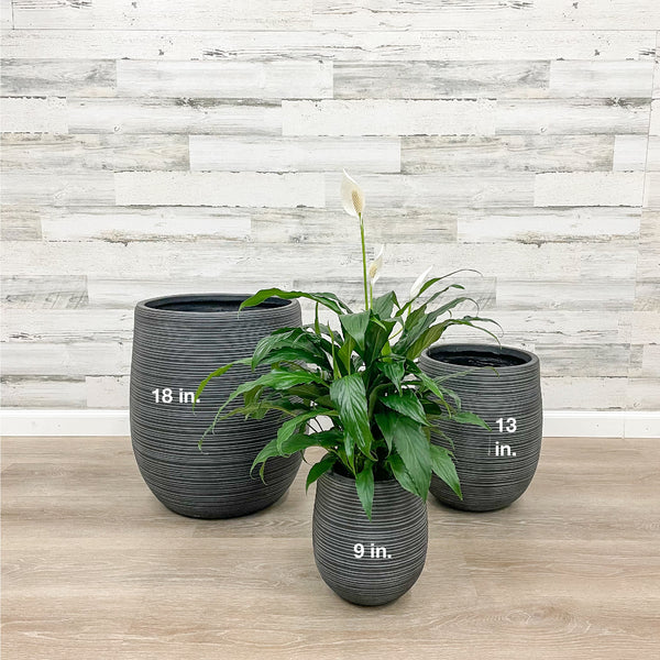 Fiberclay Striped Planter -  Black - 9-inches