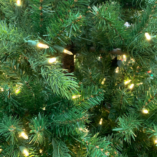 Colorado Spruce Warm White LED Lights 7.5 ft.