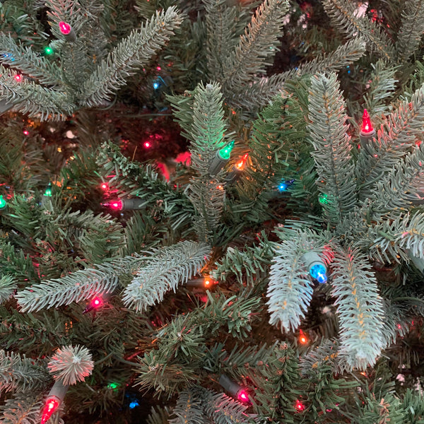 Canterbury Fir Multi-Colored Sure-Lit Lights 9 ft.