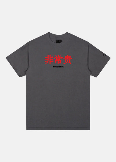 VERY EXPENSIVE TEE (CHARCOAL)