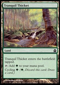 Tranquil Thicket [Commander 2011] | Boutique FDB TCG