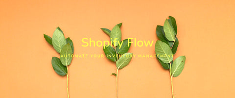 Use Flow to Automate Your Inventory Management and Reorder Low-Stock Products