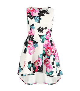'Anna' Dip Hem Floral Skater Dress