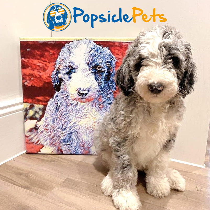 Custom Color Art Pet Illustration Canvas