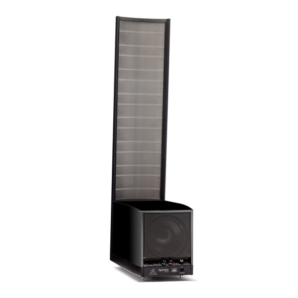 Martin Logan Expression ESL 13A