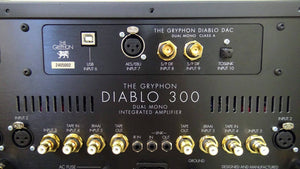The Gryphon Diablo 300 Integrated Amplifier with optional DAC (rear view) - Douglas HiFi