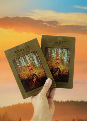 TWO Journey Cards, Forest Decks, Art Collection with Guidance Questions