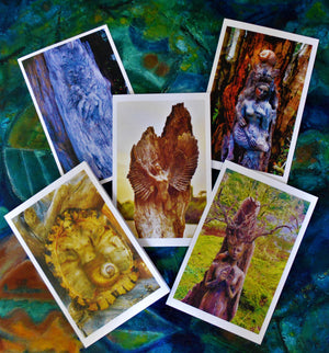 5 Pack Art Card Deal, Five Animal Spirit Cards