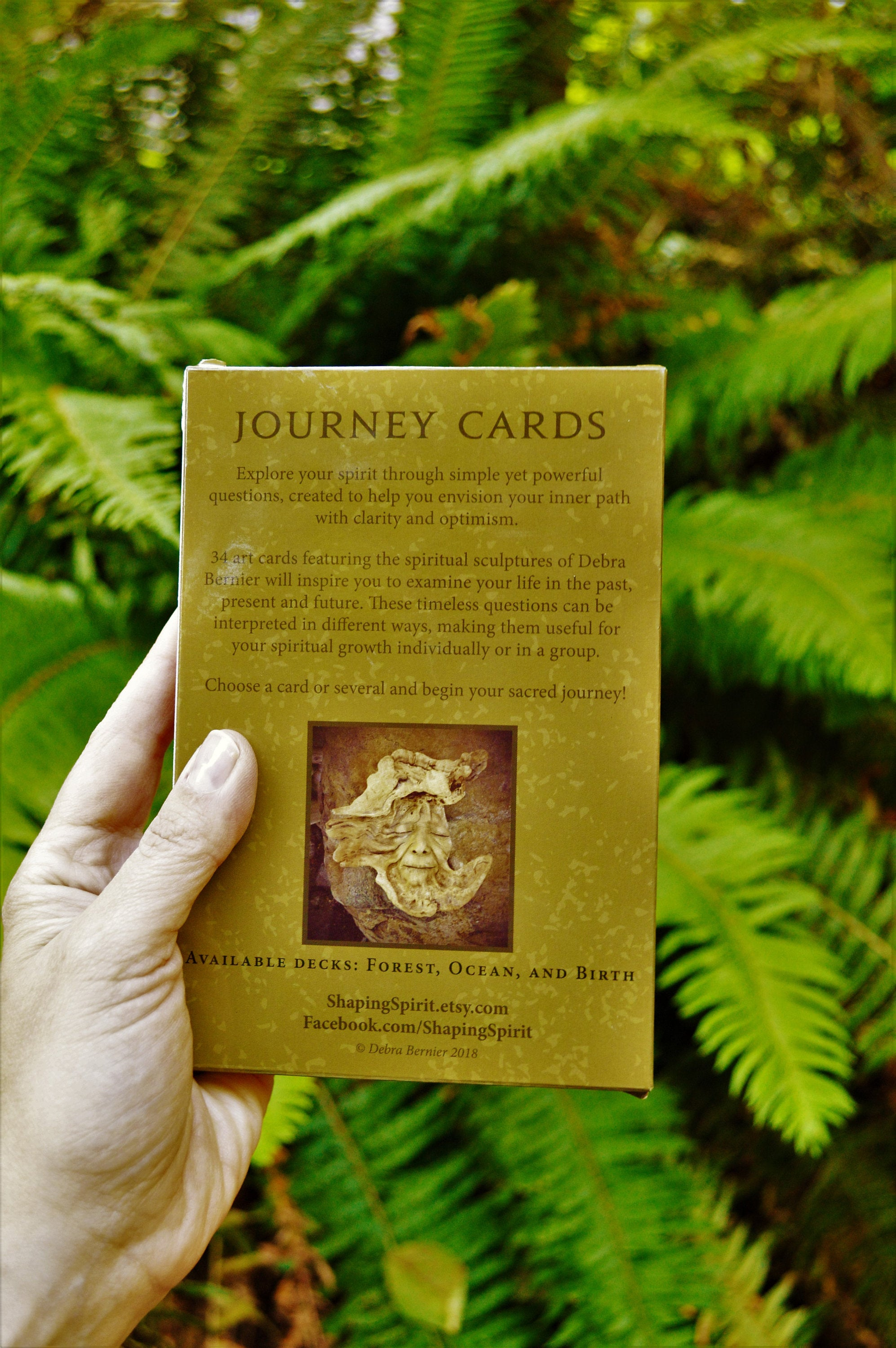 Combo Deal: Two Snail Babies & Journey Cards Deck