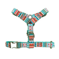 Aztec | Harness & Leash