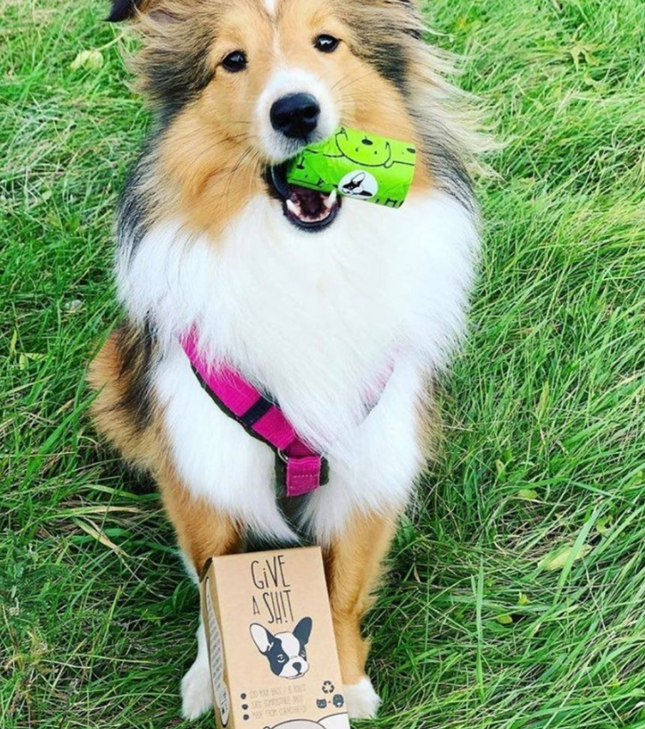 Compostable plastic free dog waste bags