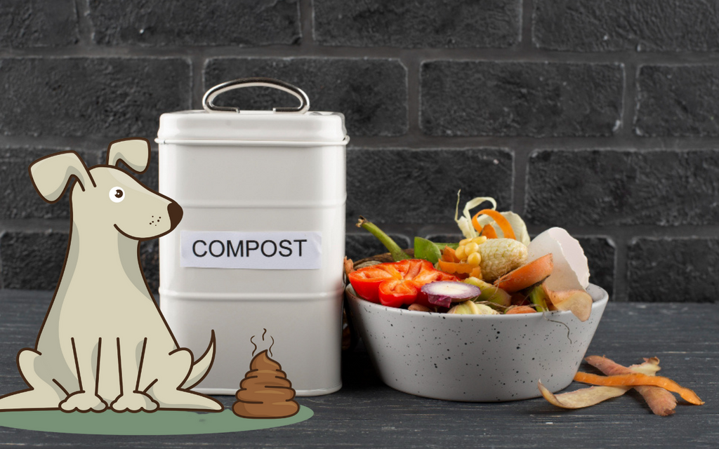 Compost dog poop in your balcony: a DIY compost bin