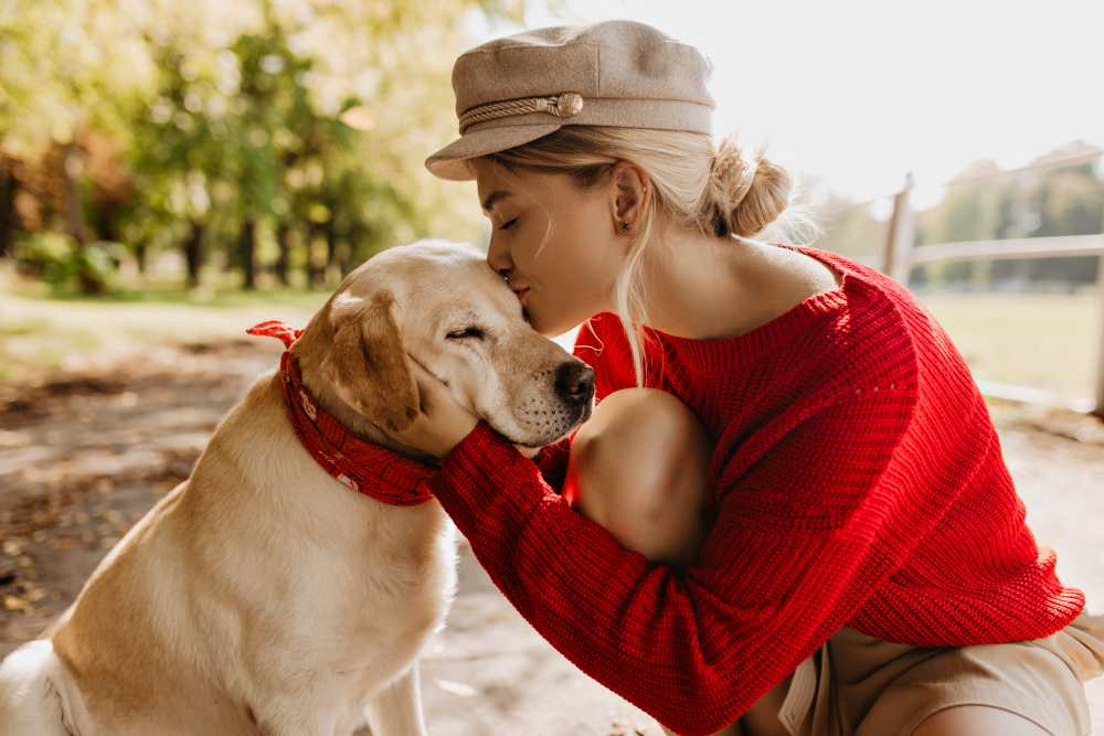 4 ways to reduce stress with your dog