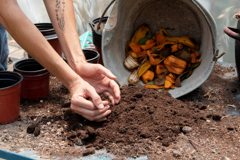 How to do a great compost with dog waste