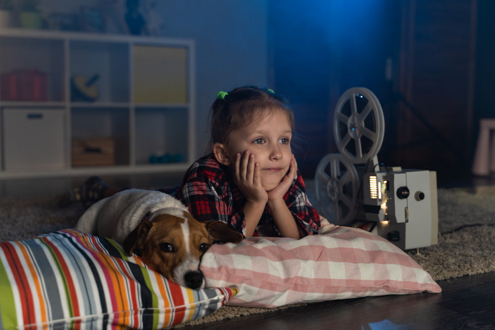 10 best movies for dog lovers