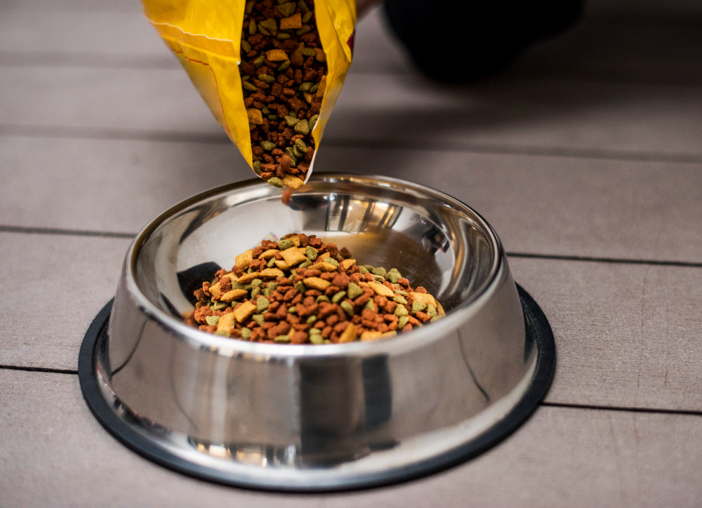 How to make your own sustainable dog food at home