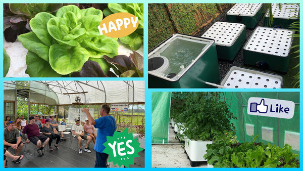 Aquaponics Class - Learn How to Grow Your Own Food & Become Self-Sustainable!