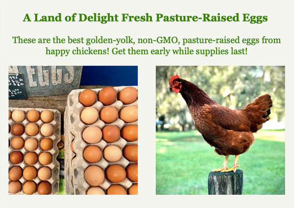 A Land of Delight Fresh Pasture-Raised Eggs   These are the best golden-yolk, non-GMO, pasture-raised eggs from happy chickens! Get them early while supplies last!