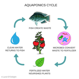 Aquaponics 6-Bed Self Sustaining Garden System