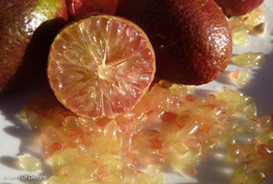 Australian Red Lime Slice and fruit