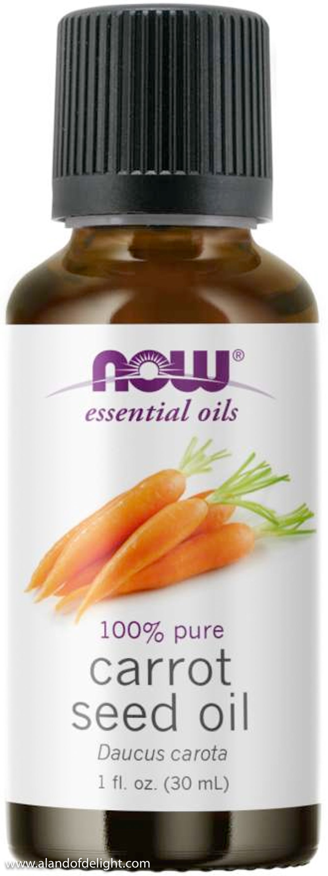 Carrot Seed Oil  Bottle - 1 fl. oz.