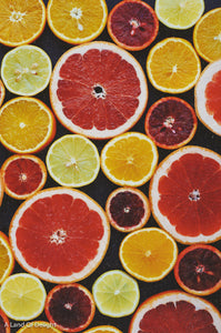 Australian Red Lime slices with other citrus fruits