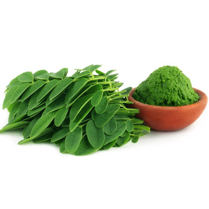 Fresh Moringa Leaves next to Bowl of Moringa Powder