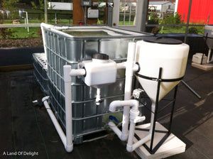 Aquaponics 3-Bed Self Sustaining Garden System