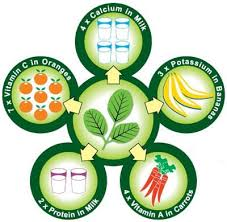 One Planet Nutrition Moringa Powder Nutrition Graph