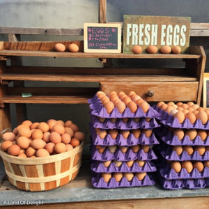 Cartons and Bucket filled with Pasture Raised Eggs: One Dozen or One Flat (Non-GMO fed) LOCAL PICK UP ONLY