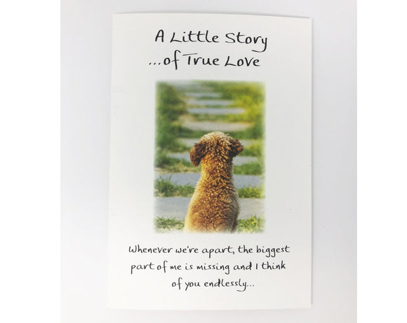 Card - A Little Story of True Love