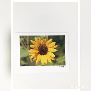 Cards - Sunflower