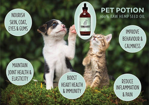 Hemp For Dogs & Cats - Healthy Alternative?