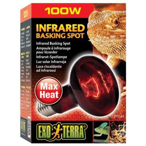 Exo Terra Heat Glo Infrared Heat Lamp - 100 Watt