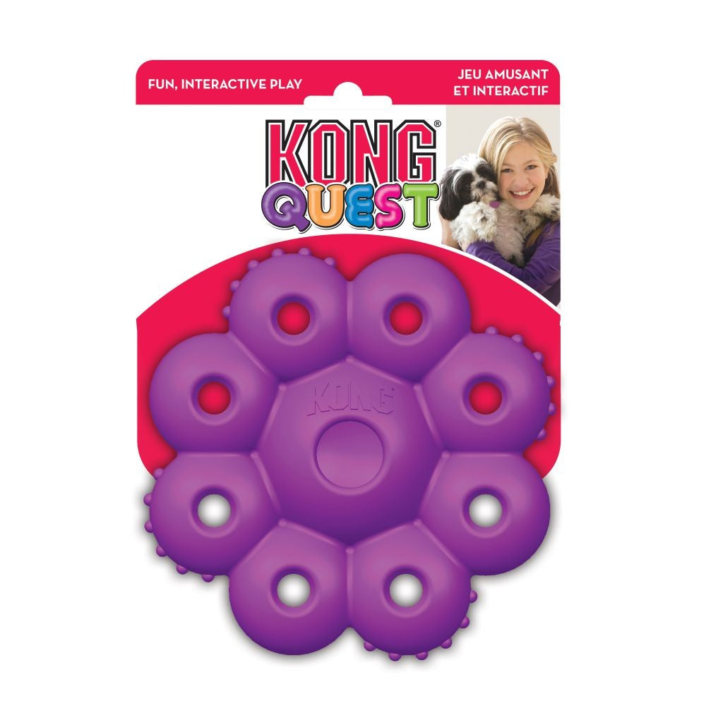 KONG QUEST STAR PODS LARGE