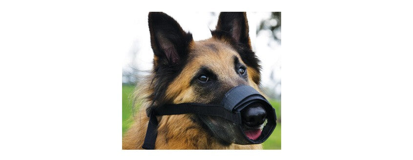 BEAU PET ADJUSTABLE DOG MUZZLE BLACK LARGE