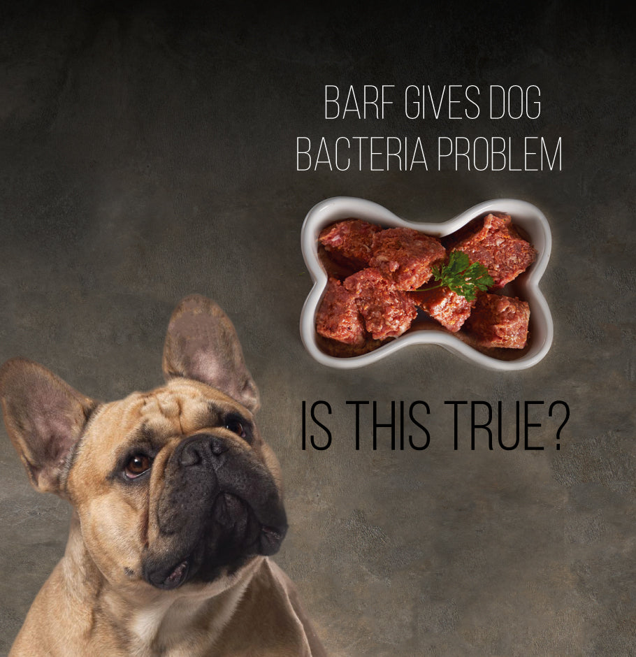 Do raw feeding contribute in bacteria that could harm our pets?