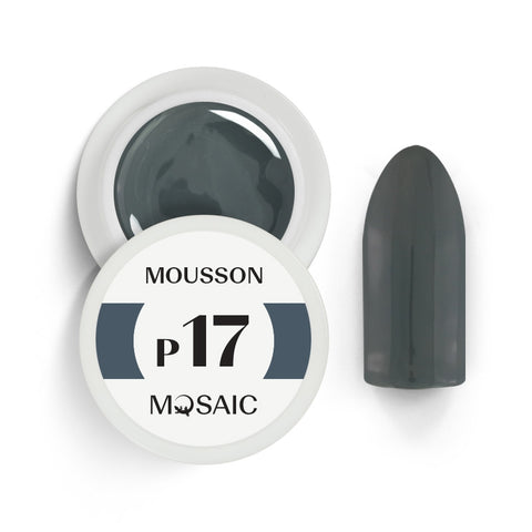 P17 Mousson 5 ml NEW!