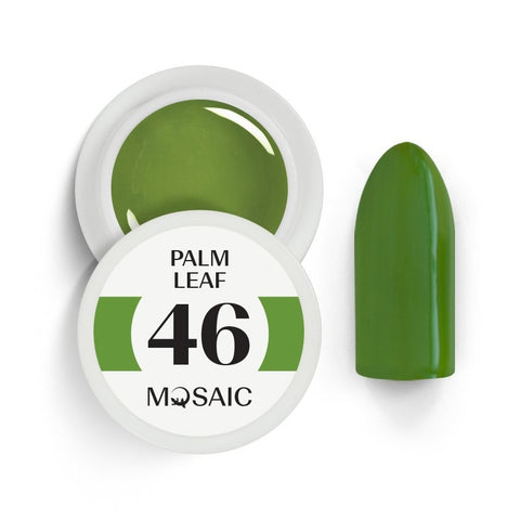 46 Palm leaf 5 ml